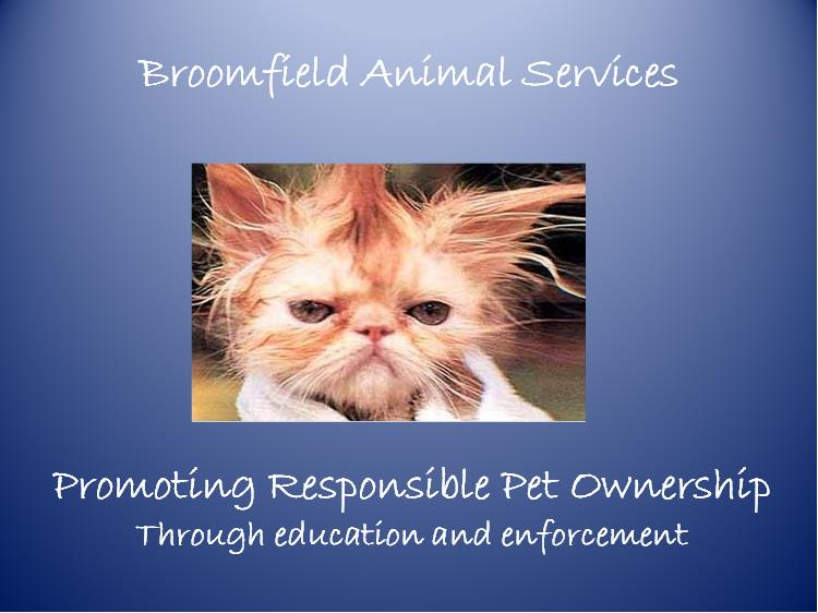 Promoting Responsible Pet Ownership
