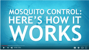 Mosquito Control Video