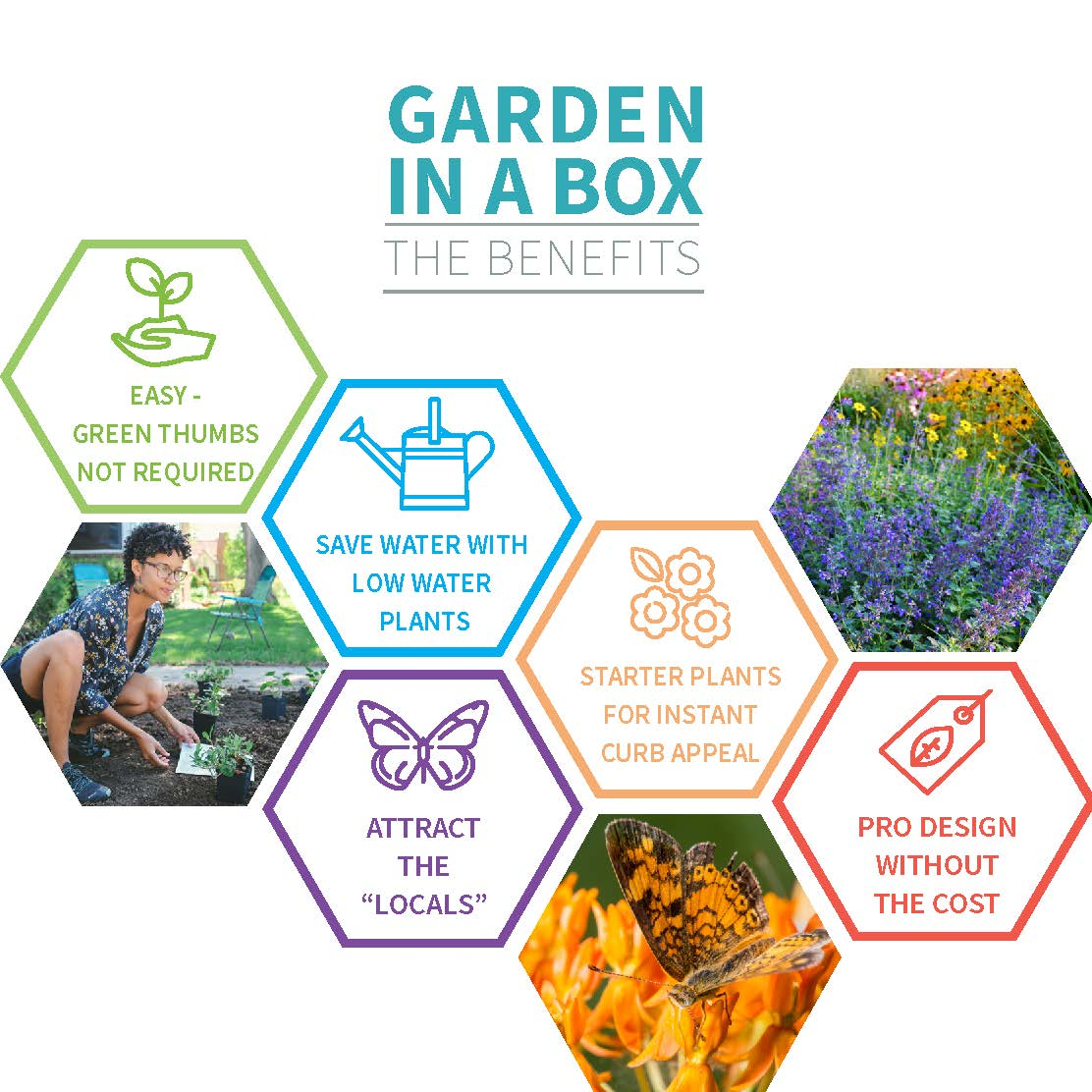 Garden In A Box Benefits Infographic