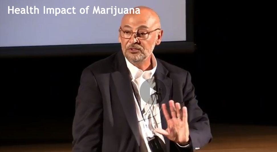 Health Impact of Marijuana