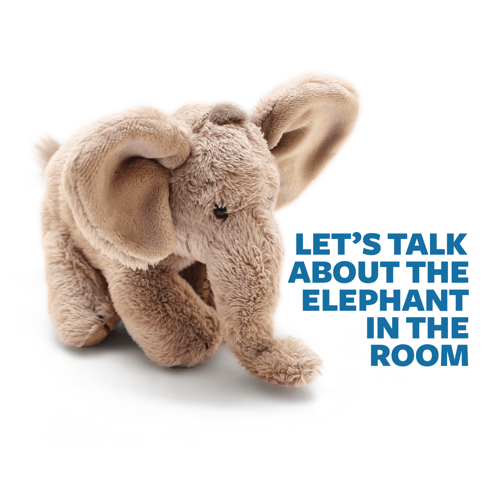 talk about the elephant in the room Opens in new window