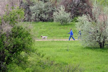 Man walking dog on trail