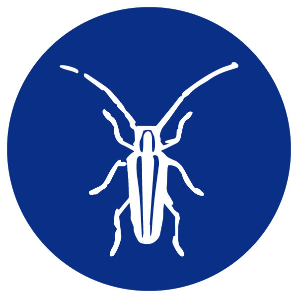 blue heading icons_ash borer.png