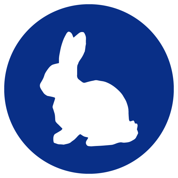 blue heading icons_bunny.png